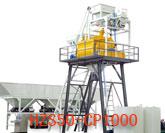 HZS50-CP1000