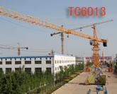 TC6013